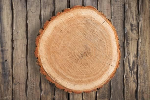 wood. - wood texture zdjęcia i obrazy z banku zdjęć