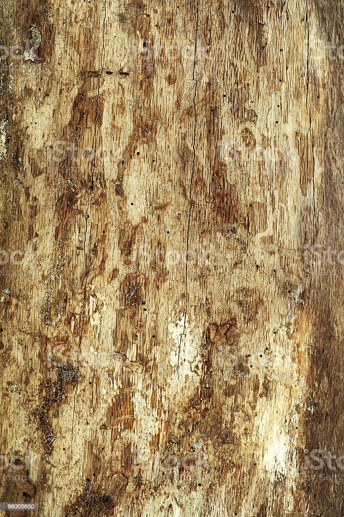 De madeira foto royalty-free