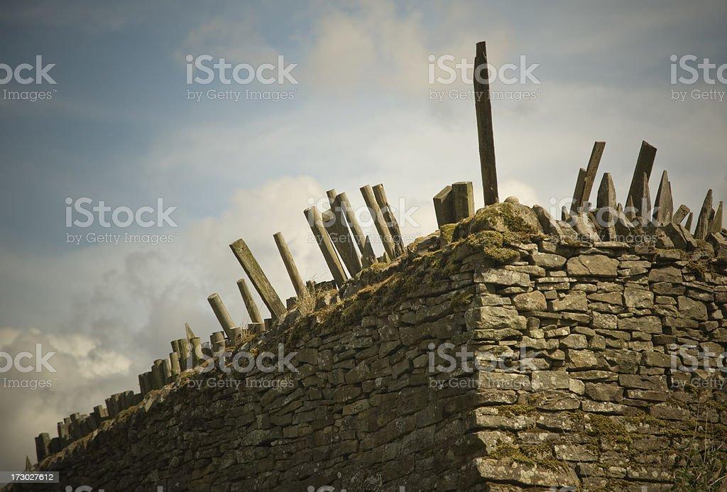 Wood Pile royalty-free stock photo
