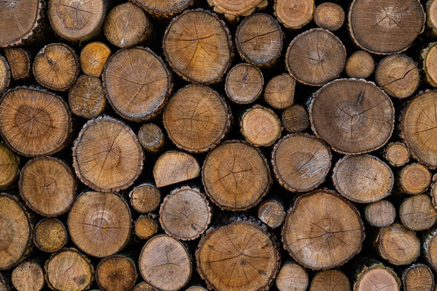 wood planks end wood planks end lumberjack stock pictures, royalty-free photos & images