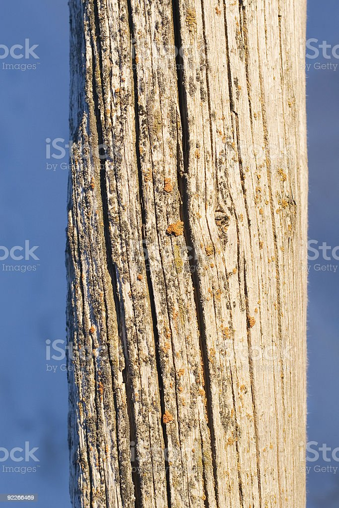Wood Post stock photo