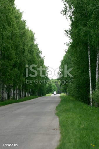 It is road in a forest.