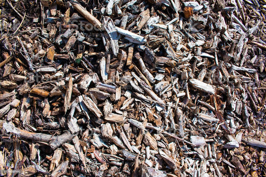 Wood Sawdust Texture stock photo