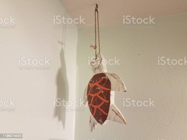 Wood sea turtle hanging from rope and hook picture id1199274424?b=1&k=6&m=1199274424&s=612x612&h=jwv yuzcv0cdgmsdaqa9xtu 3s3b3ff7cv8noi6iuks=