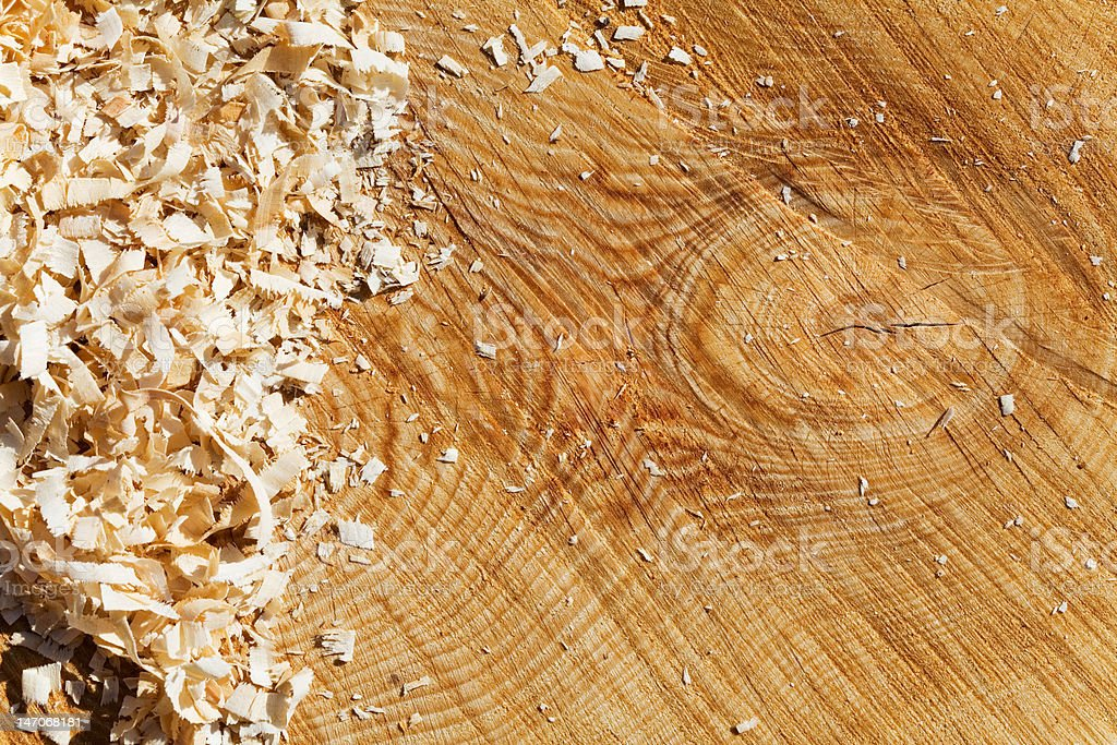 Wood shavings on a pine cross section stock photo