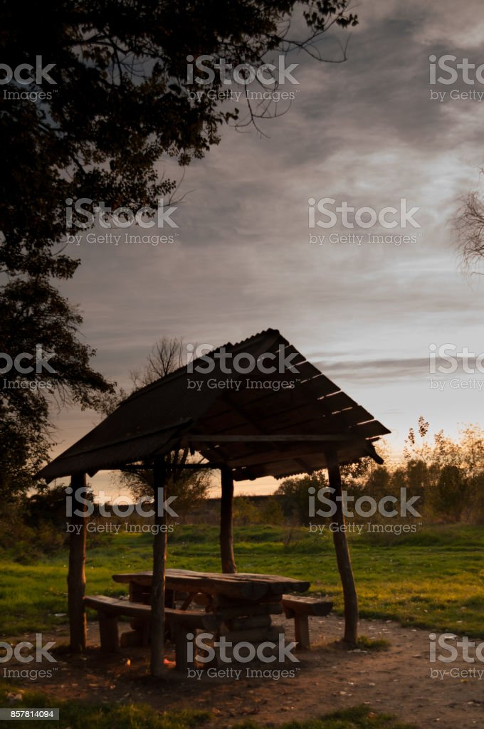 wood shelter in the forest in the evening stock photo