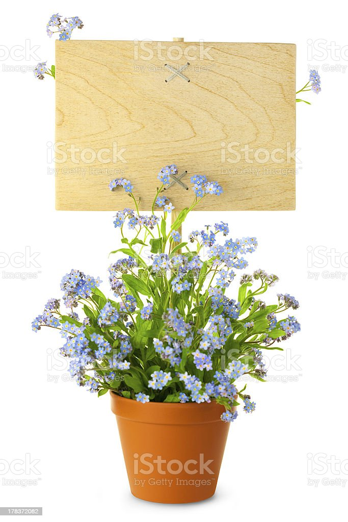 Wood Sign with Flowers / empty board for your text royalty-free stock photo