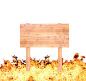 istock Wood Signs the Flame 505658591