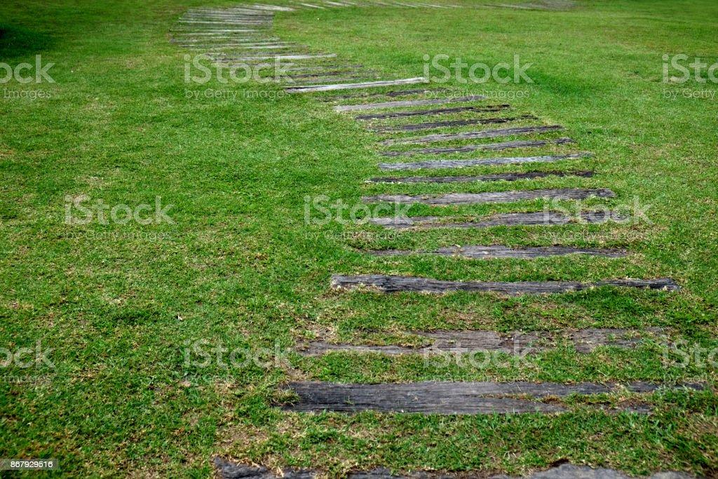 wood stair way on green garden outdoor stock photo