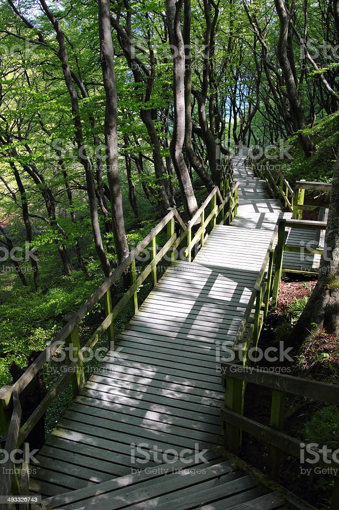 Wood stairs royalty-free stock photo