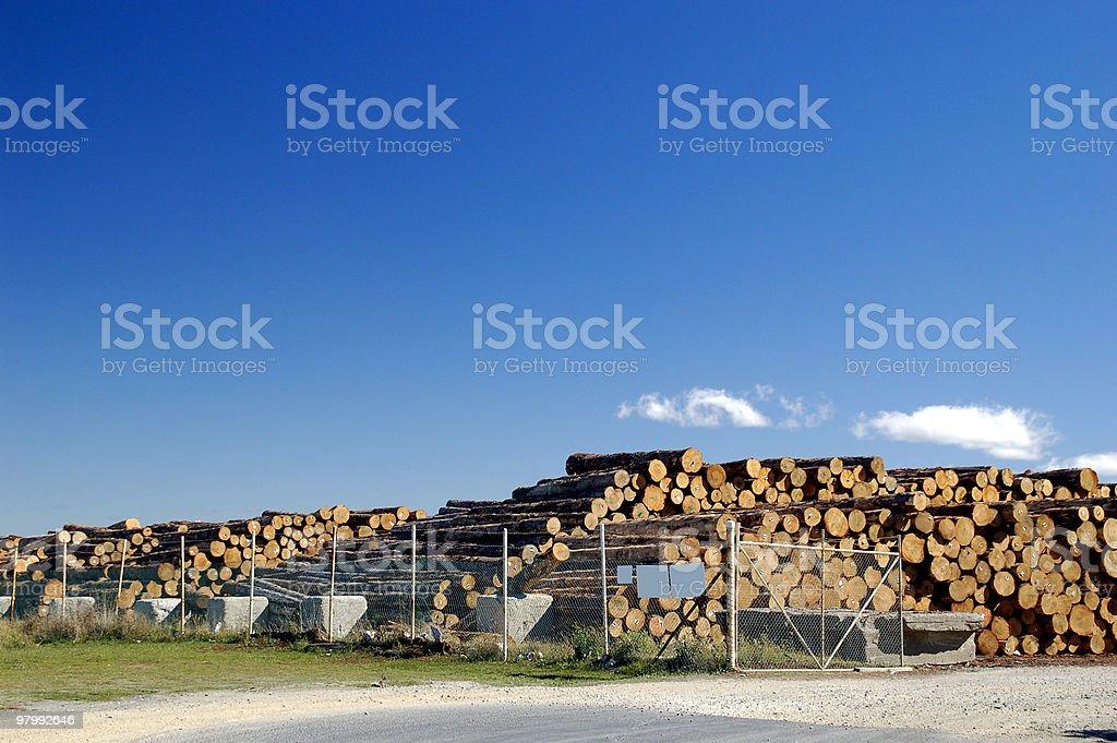 Wood stock royalty-free stock photo