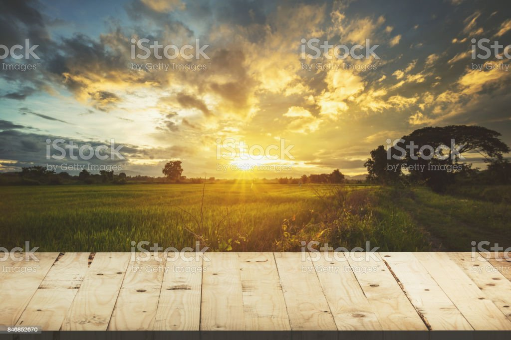 Wood table and rice field and sunset blue sky with lens flare, display montage for product. stock photo