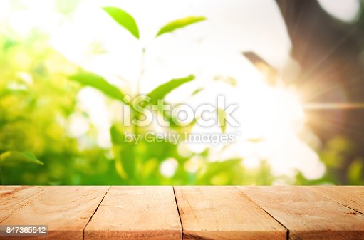 680878382istockphoto Wood table on blur of fresh green garden with sunlight 847365542