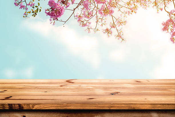 wood table top in spring - sakura background stock photos and pictures