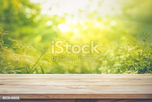 680878382istockphoto Wood table top on blur green abstract garden with sunlight. 802648838