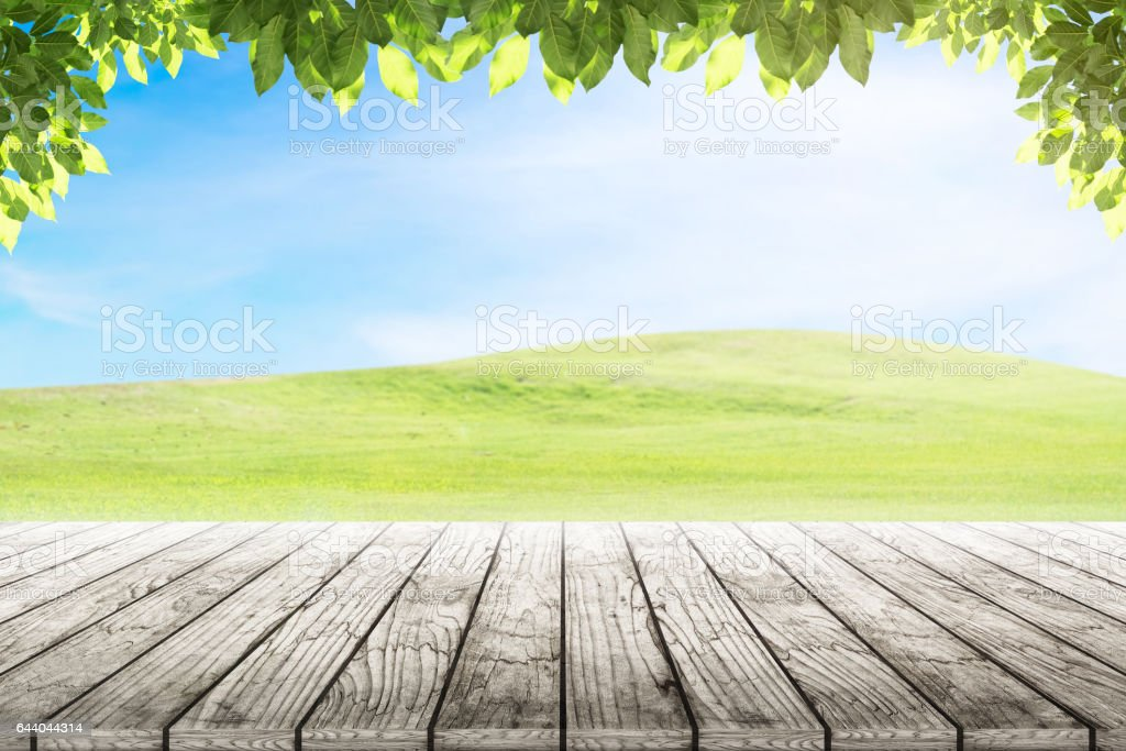 Wood Table Top On Mound Slope Green Grass Natural ...