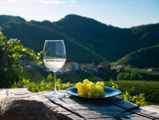 Wood table, White wine, grape vineyard country landscape stock photo