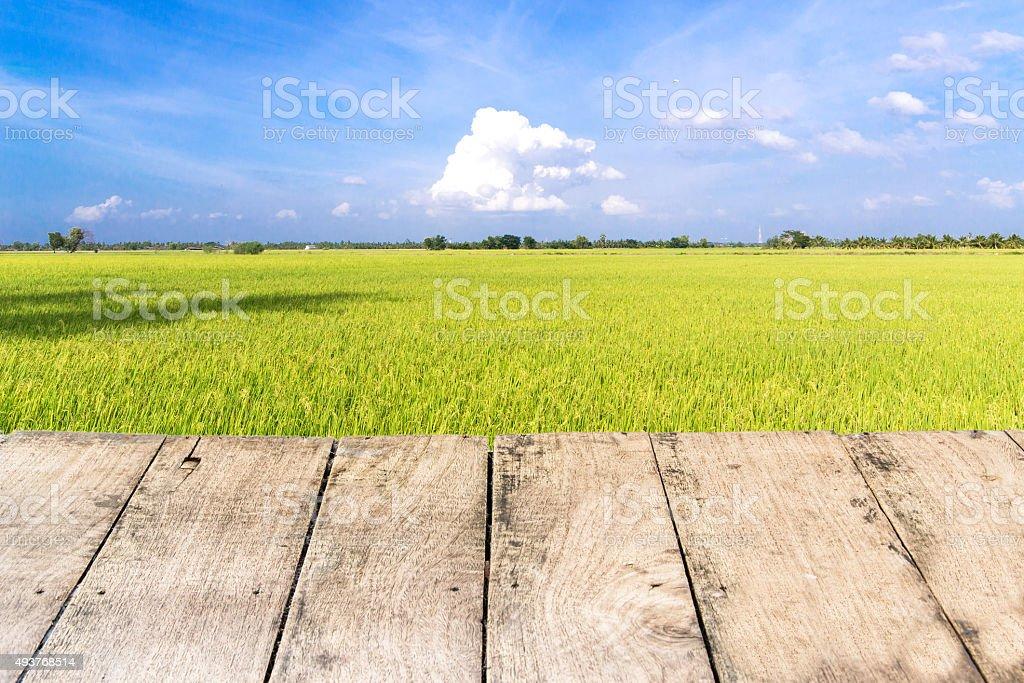 Terraza De Madera Con Arroz Campo En Cielo Azul Foto De