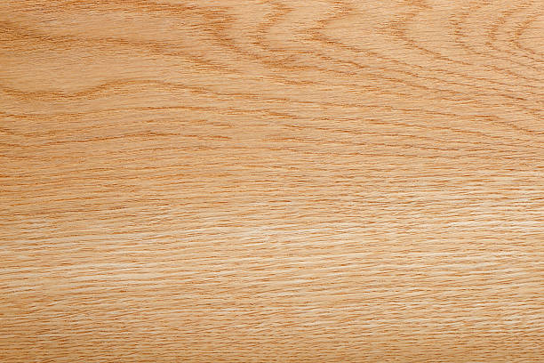Royalty free white oak wood pictures images and stock