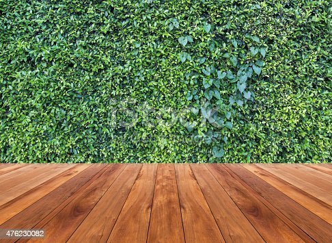 601026242 istock photo Wood texture and green leaves wall background 476230082