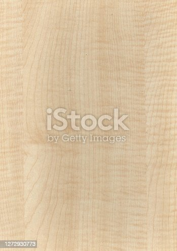 wood texture and pattern for background and rendering 3d model