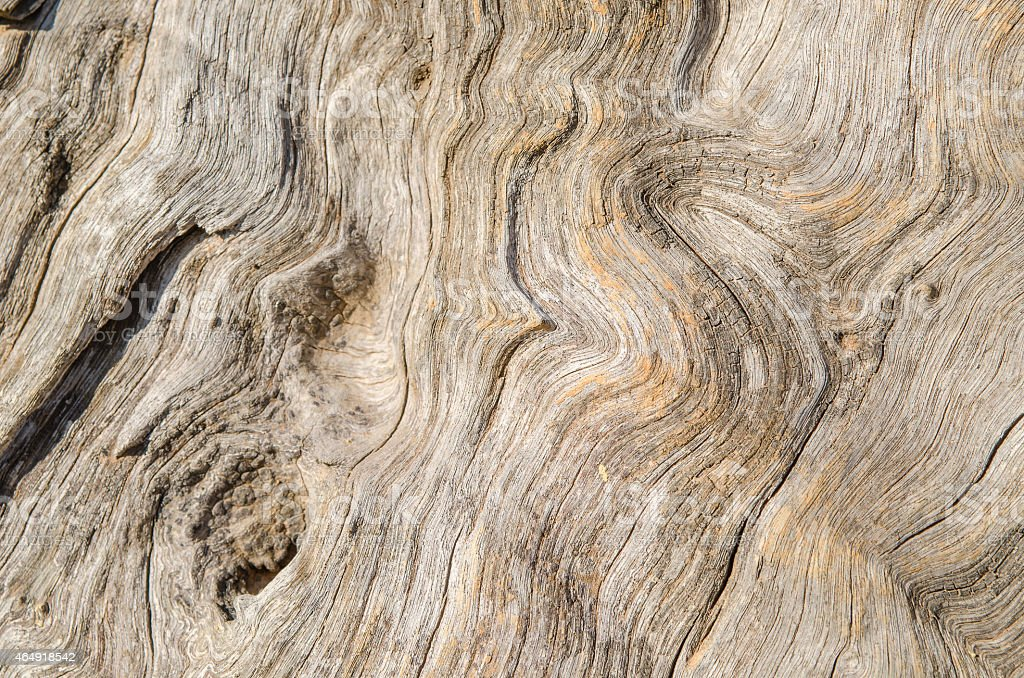 wood texture. background old panels stock photo