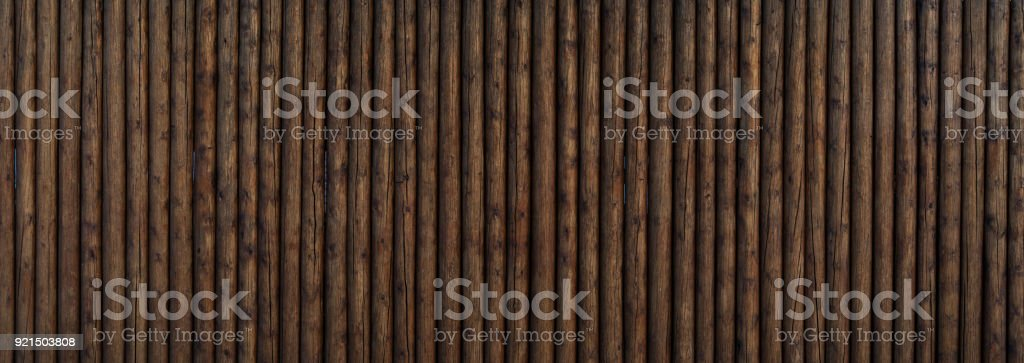 Wood texture background, Tree trunks wall texture stock photo