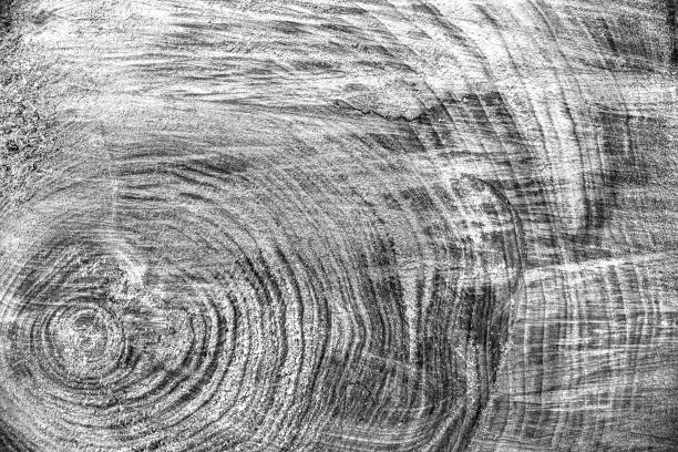wood texture background, wooden bark close up. grunge textured monochome image - woodcut stock photos and pictures