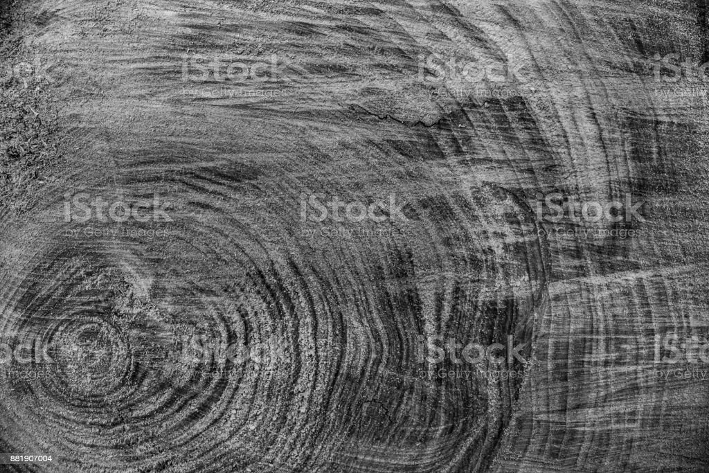Wood texture background, wooden bark close up. Grunge textured monochome image stock photo