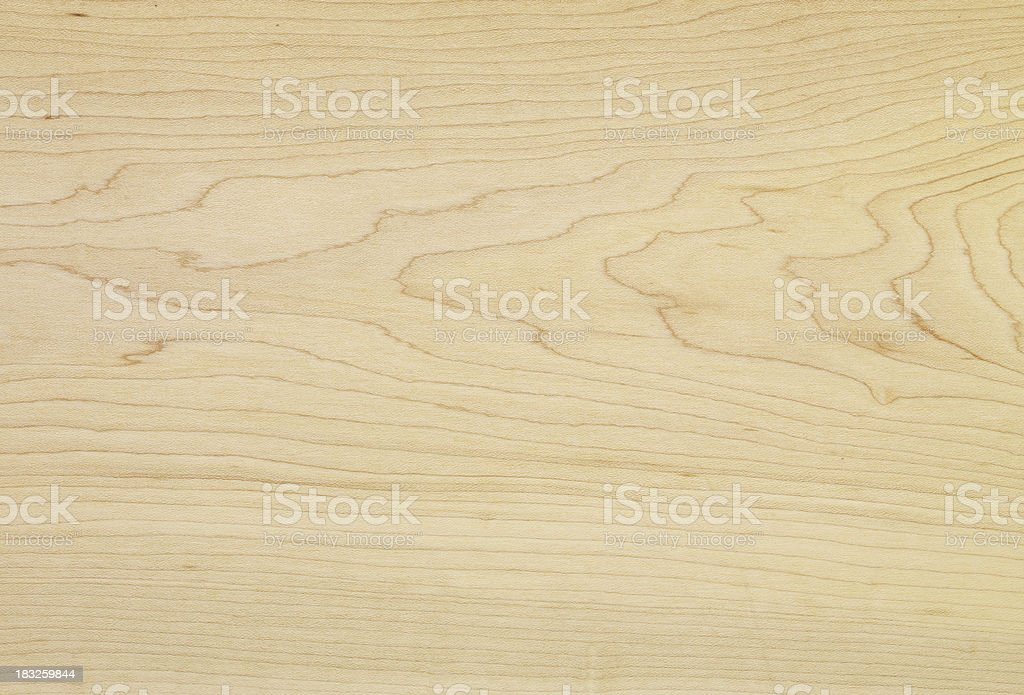 Wood Texture - Canadian Maple stock photo