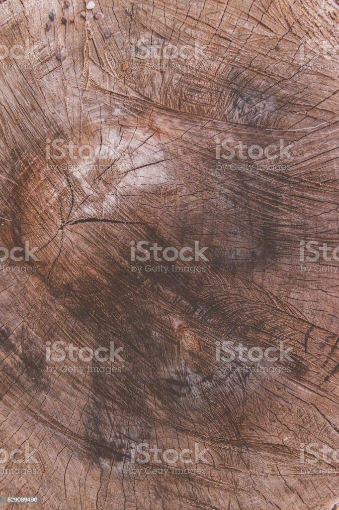 Wood texture circle stock photo