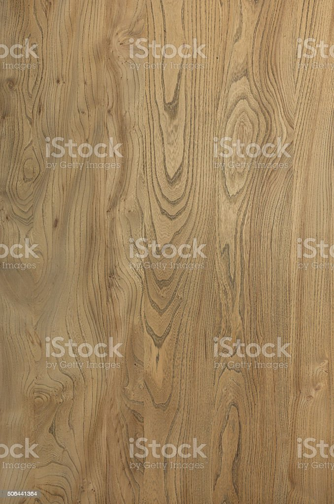 Wood Texture Elm Abstract Natural Grain Pattern for Background I stock photo