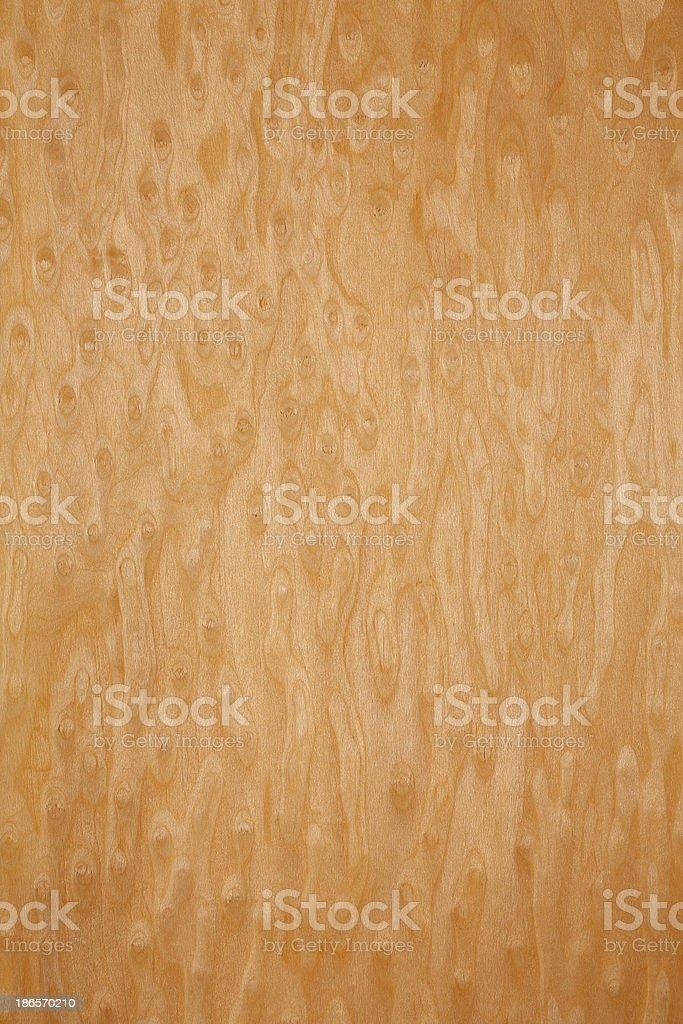 Wood texture - Erable royalty-free stock photo