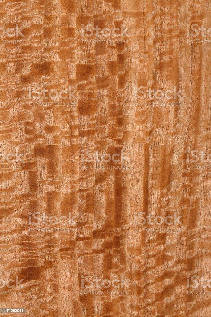 Wood texture - Eucalyptus stock photo