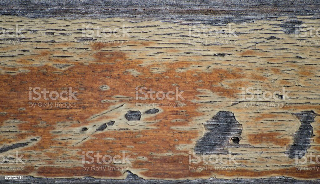 Wood texture, Natural Wooden Background in traditional vintage style stock photo