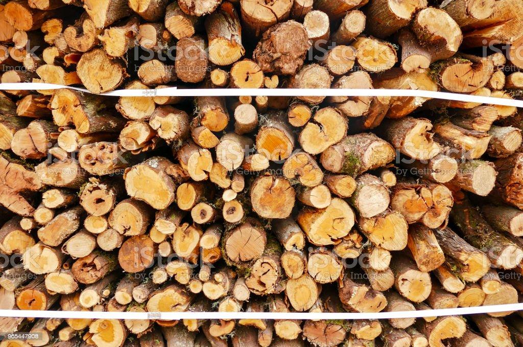 Holz Textur von cut-tree trunk - Lizenzfrei Abstrakt Stock-Foto