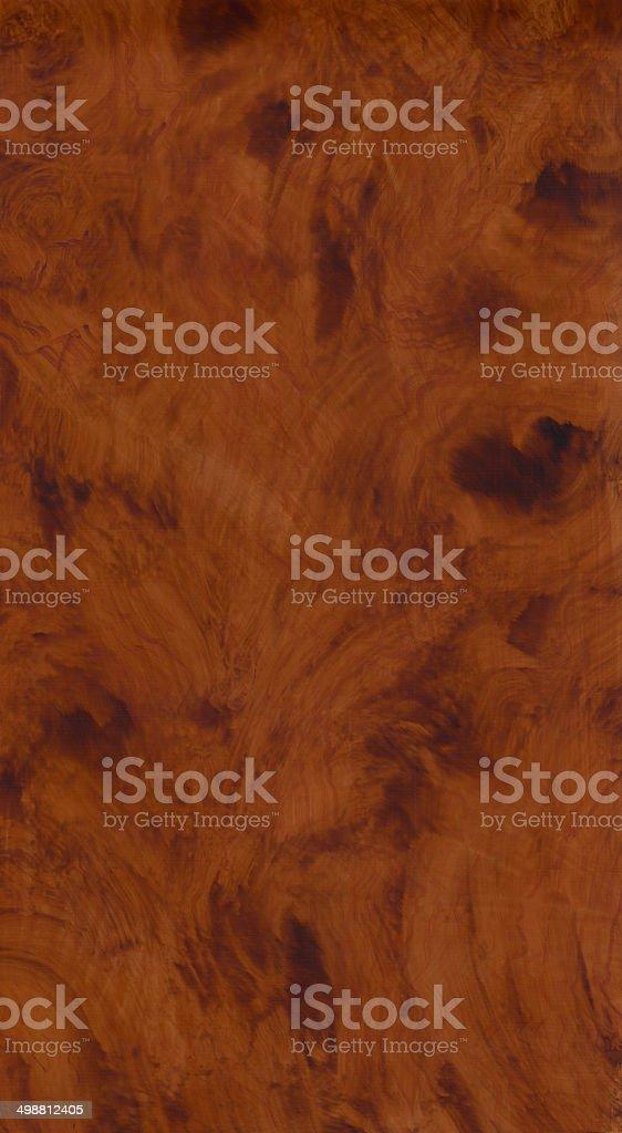 Wood Texture Panel - Burl 2 stock photo