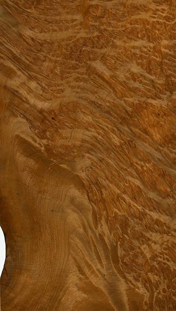 Wood Texture (Vavone burl) stock photo