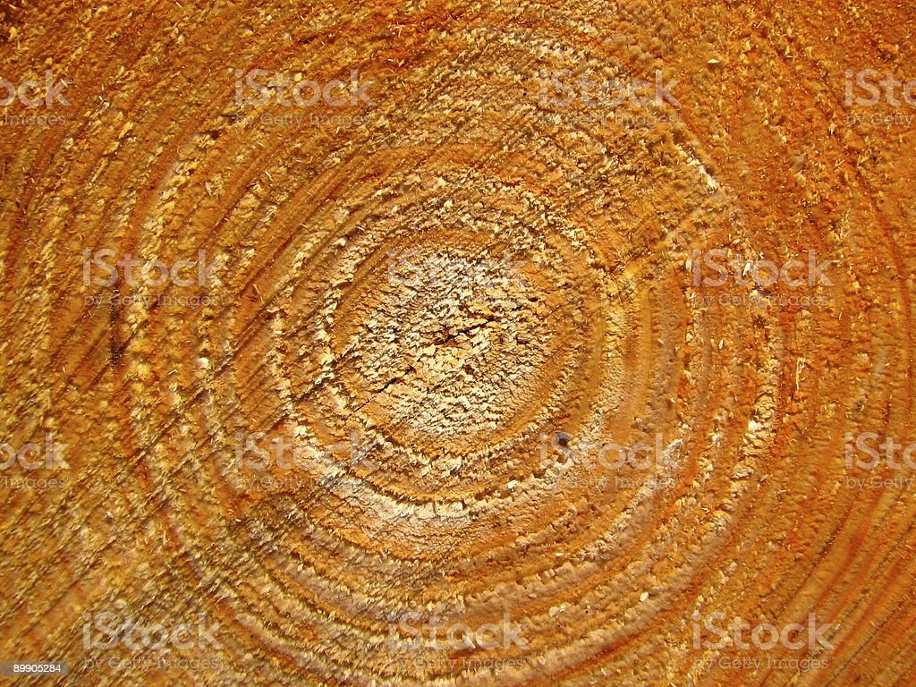 Wood texture royalty free stockfoto