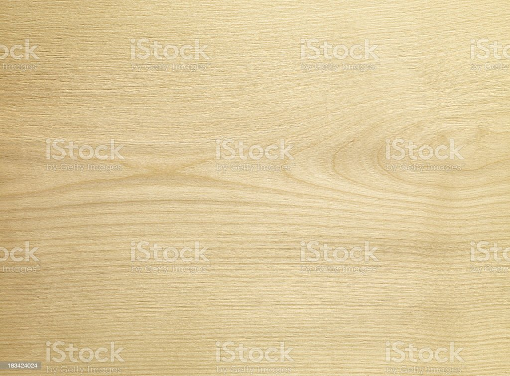 Wood  texture - Silver birch stock photo