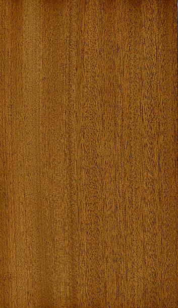Wood Texture (Sapelli) XL stock photo