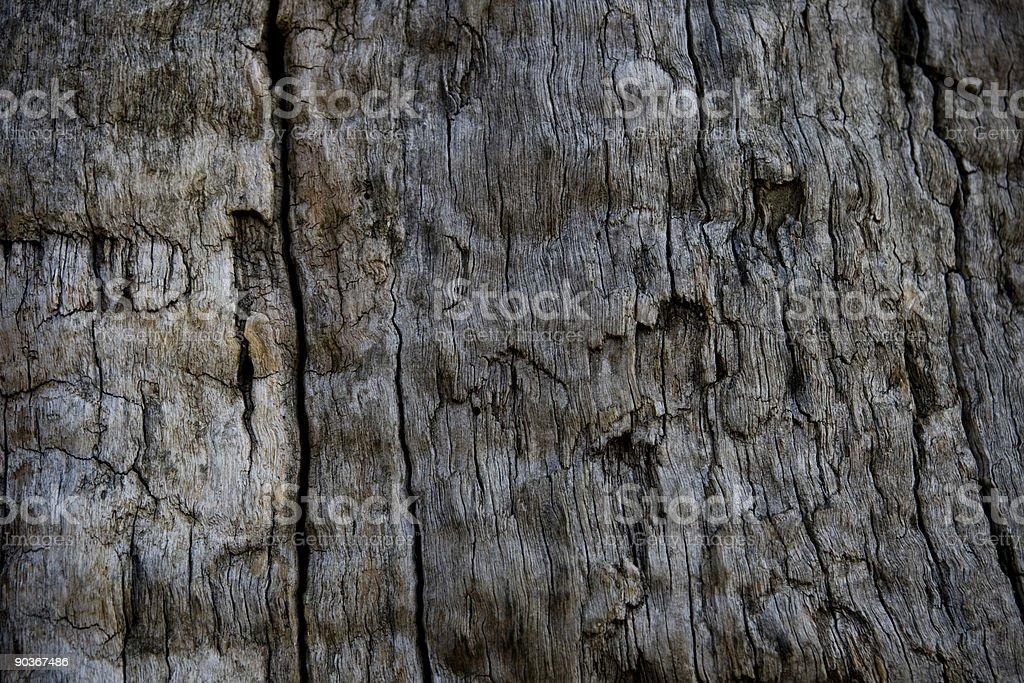 Wood trexture stock photo