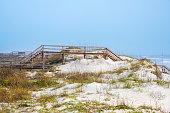 Wooden walkway for access over sand dunes to beach.  Vegetation around walkway with ocean and hazy sky in the background
