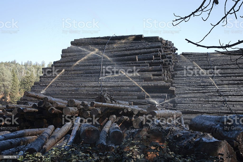 Wood watering royalty-free stock photo