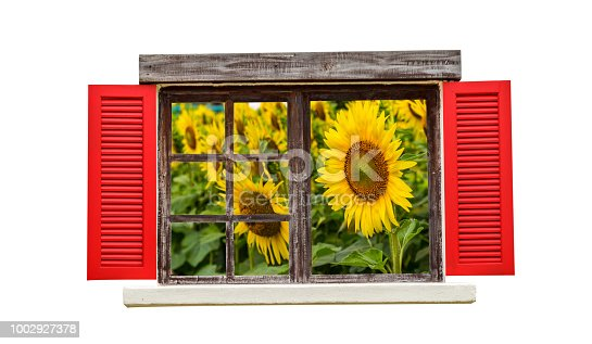 istock Wood window and flower 1002927378