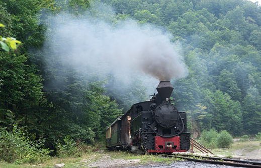 Running wood-burning locomotive of Mocanita (Maramures, Romania). Old train is situated against green forest background.