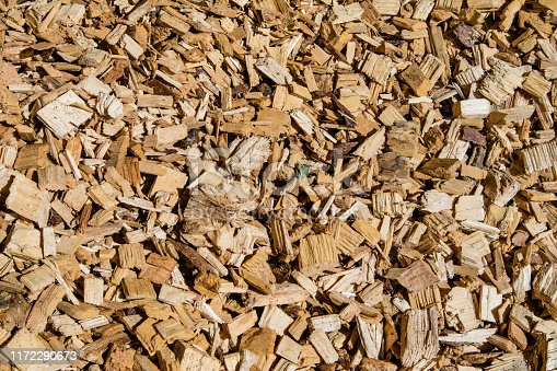 Woodchip solid fuel for Biomass plant from forest waste harvesting