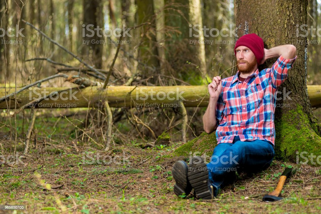 woodcutter after work put off his ax and sat down under a tree to rest in the forest - Royalty-free Adult Stock Photo