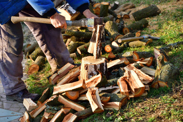 Woodcutter cuts wood with an ax in the garden of the village stock photo
