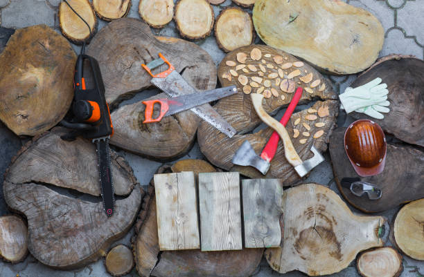 woodcutter,lumberjack,saw, stumps - tree surgeon stock photos and pictures